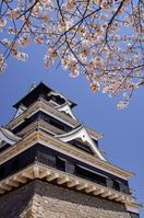 Kumamoto Castle Stock photo [1925154] Castle