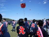 Hamamatsu festival kite flying Stock photo [1936658] Hamamatsu