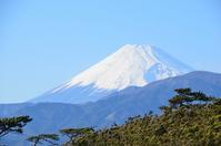 Fuji from Numazu Thousand Matsubara stock photo