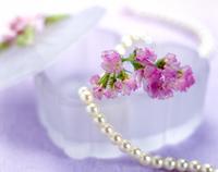 Jewelry box Stock photo [54510] Jewelry