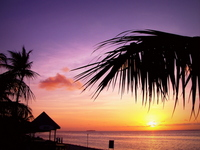 Tropical Sunset Stock photo [2038133] Summer