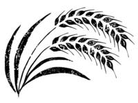 Wheat brush stock photo