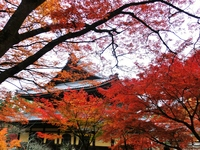 Nanzen sermon hall stock photo