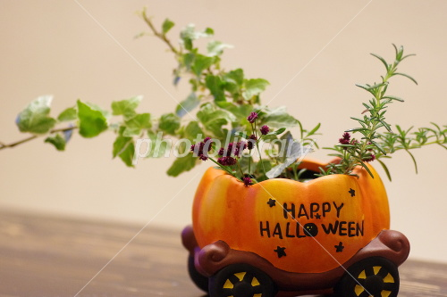 Halloween arrangement Photo