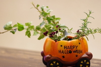 Halloween arrangement Stock photo [2250356] Halloween