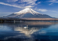 Fuji from Lake Yamanaka Stock photo [2252827] Mt.