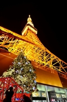 Tokyo Tower and the Christmas tree Stock photo [2256486] Christmas