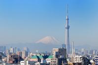 Sky Tree and Mount Fuji Stock photo [2256983] Sky