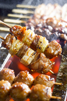 Grilled chicken Stock photo [2263499] Yakitori