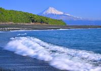 Miho coast and Mount Fuji stock photo