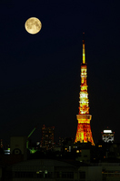 Tokyo Tower and the full moon [2383669] Tokyo