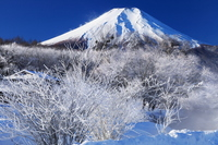 Fog and Mount Fuji Stock photo [2388463] Rime