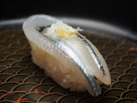 Halfbeak of nigiri sushi Sushi