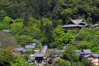 Fresh green of Hase-dera Temple panoramic view Stock photo [2393379] Hase