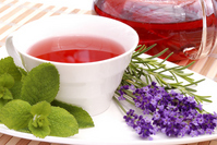 Herbal tea Stock photo [2393467] Herb