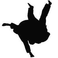 Silhouette = judo [2393865] Silhouette
