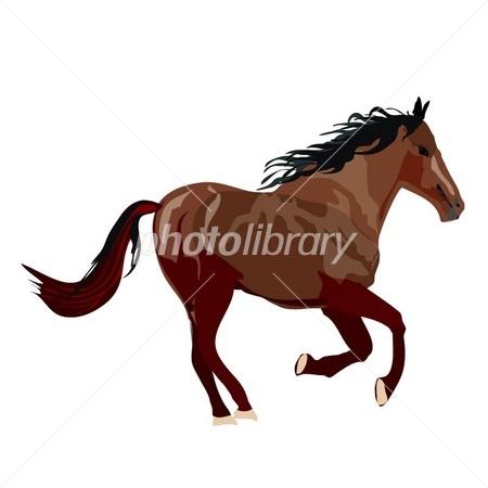 馬のイラストギャロップをしている茶色のリアルな馬 イラスト素材