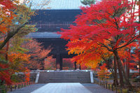 Nanzen Namdaemun foliage Stock photo [2626796] Kyoto