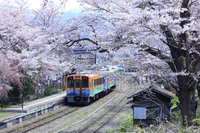 Sakura bloom Yunokami-Onsen Station and train Stock photo [2629135] Yunokami-Onsen