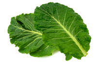 Kale Stock photo [2630741] Kale