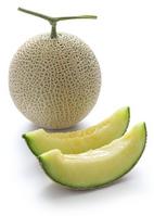 Cantaloupe Stock photo [2632120] Melon