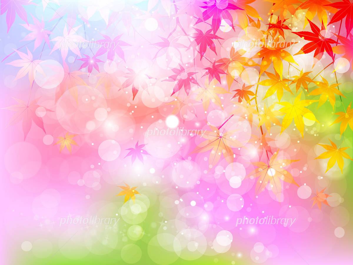 Maple autumn leaves background イラスト素材