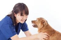 Veterinary Stock photo [2720200] Female