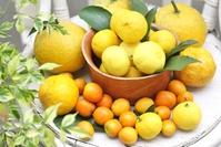 Citrus variety Stock photo [2795622] Mandarin