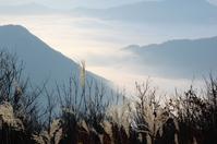 Sea of Oeyama Stock photo [2885288] Dajiangshan