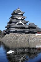 Matsumoto Castle there are swans Stock photo [2891210] Matsumoto