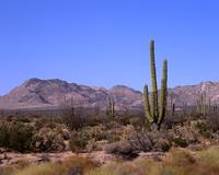 Baja California Stock photo [2965474] Baja