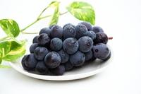 Pione Stock photo [2971153] Grape