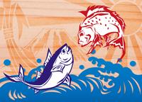 Thailand and tuna big catch flag [3052505] Big