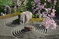 Taizō-in garden Stock photo [3054573] Garden