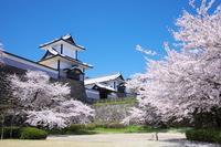 Kanazawa Castle Ishikawa Gate and cherry Stock photo [3058218] Ishikawa