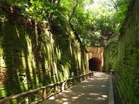 Sashima Stock photo [3136065] Tunnel