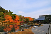 Fall of Tenryu-ji Stock photo [3145910] Kyoto