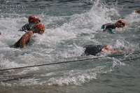 Triathlon Ironman race Stock photo [3243722] Swimming