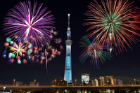 Sky tree and fireworks Stock photo [3342939] Fireworks