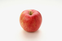 Shinanosuito apple white back Stock photo [3433332] Shinanosuito