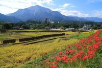 Autumn of Terasaka rice terraces Stock photo [3436919] Autumn