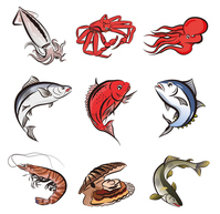Fish variety [3438508] Fish