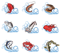 Fish variety [3438510] Fish