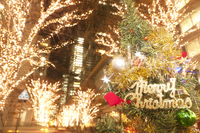 Christmas tree and the Marunouchi Naka-dori Stock photo [3440027] High