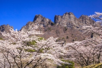 Mount Myōgi and cherry Gunma Prefecture Shimonita Stock photo [3527532] Spring