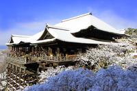 Snow Kiyomizu-dera Temple stock photo