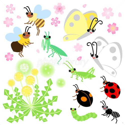 春の花 昆虫 イラスト素材 3637551 フォトライブラリー Photolibrary
