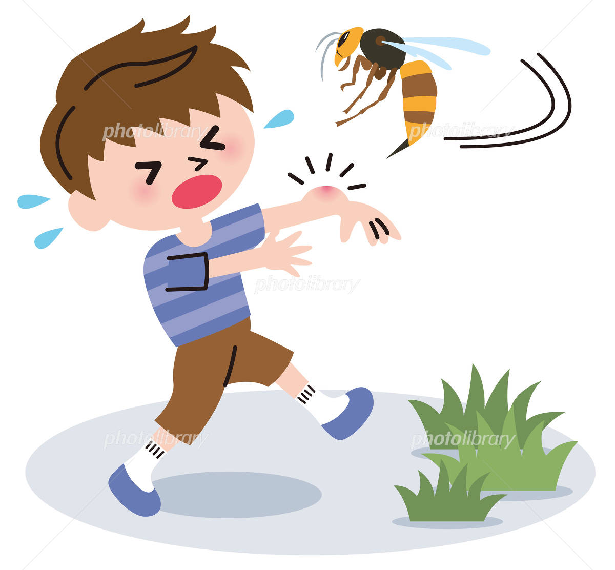 蜂にさされる イラスト素材 [ 3647088 ] - フォトライブラリー ...