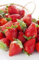 Strawberry Stock photo [3756133] Strawberry