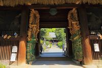 Shikoku eighty-eight places seventy-fifth number Zentsuji Deva Stock photo [3757646] Landscape